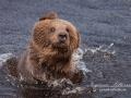 björn14