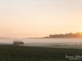soluppgang_jordbrukslandskap_munkedal_ipnaturfoto_se_dimma_ls156