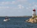 havsfiske_ipnaturfoto_se_fis70