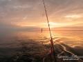 torskfiske_skagerrak_ipnaturfoto_se_fis85
