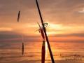 torskfiske_skagerrak_soluppgang_ipnaturfoto_se_fis84