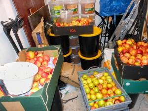 Äpplebackar, jordnötshinkar och säckar med solrosfrön trängs i förrådet.