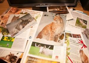 Ett litet urval av tidskrifter, magasin och pressmaterial där mina bilder medverkat.