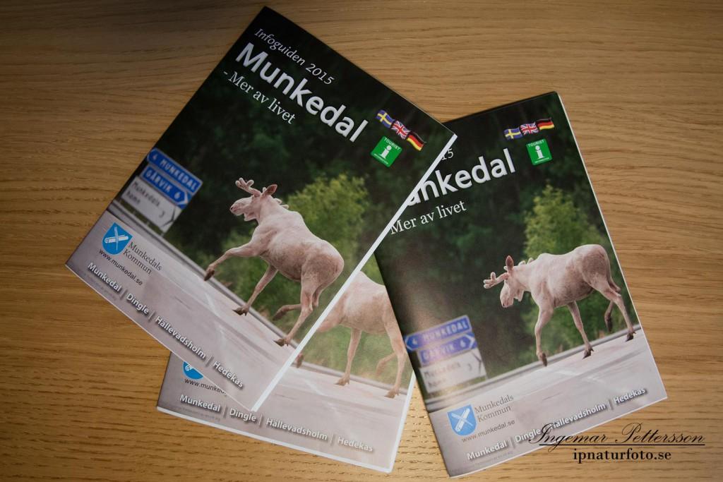 Min bleka vän pryder Munkedals kommuns kart och informations guide 2015.