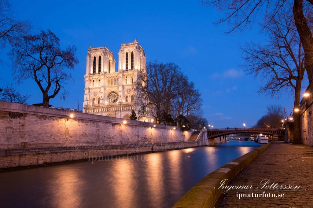 Notre-Dame de Paris en sen kväll i början på 2015.