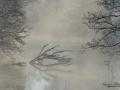 river_a_dalsland_vinter_frost_ipnaturfoto_se_ls155