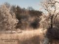 vinter_frost_ipnaturfoto_se_ls136