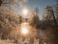 vinter_frost_ipnaturfoto_se_ls137