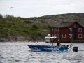 havsfiske_tavling_modern_ipnaturfoto_se_fis66